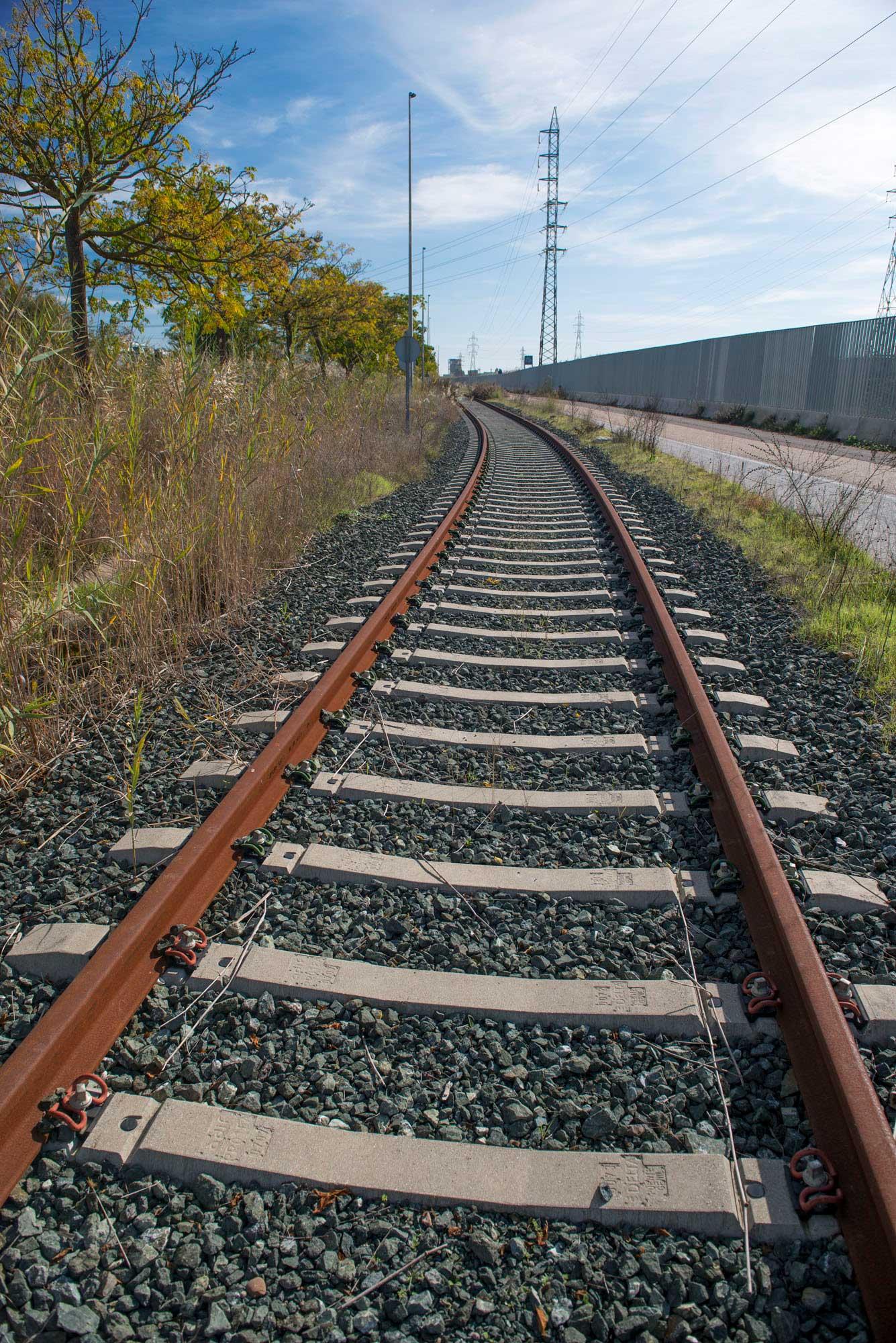 """Según el director de Planificación y Desarrollo de Puertos del Estado: """"El futuro de los puertos está en la conectividad ferroportuaria"""""""